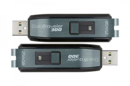 Kingston DataTraveler300 256GB