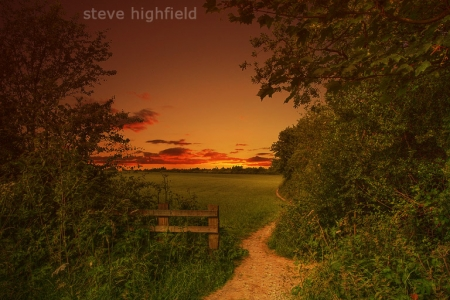 Steve Highfield photography