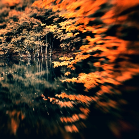Ebru Sidar photography