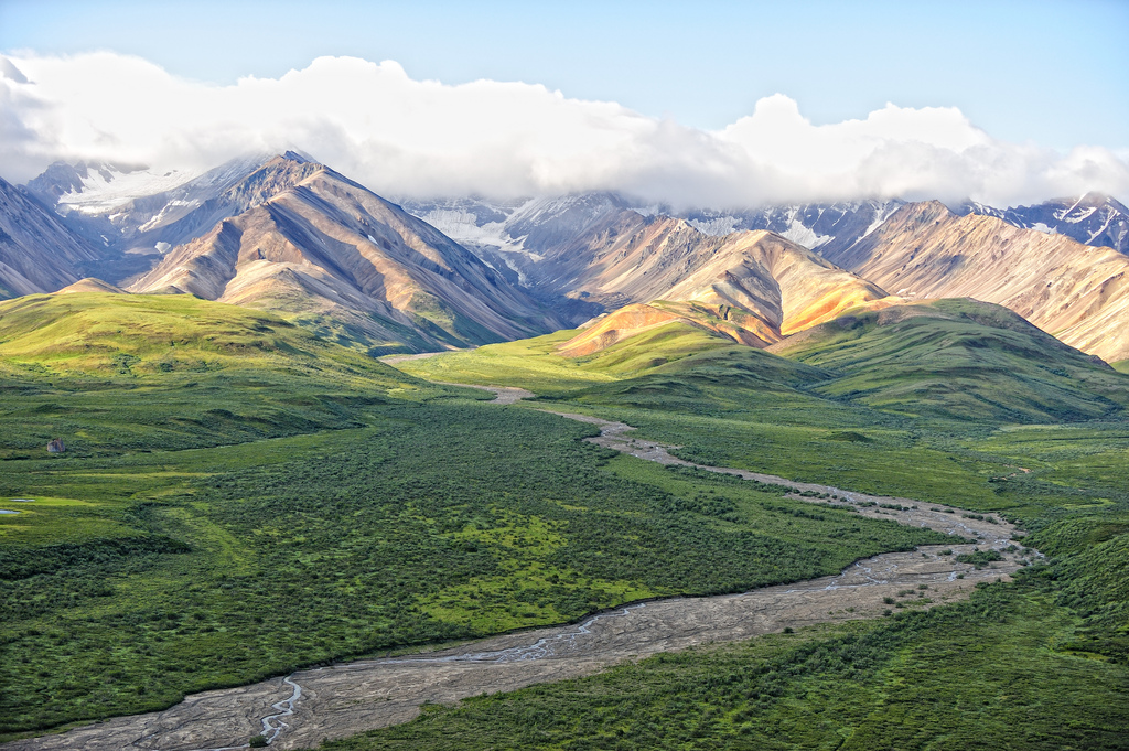denali national park essay In denali explores the grand landscapes, wildlife, plant life, and history of alaska s premier national park, as well as the priceless value of wilderness and our relationship to it immense denali national park and preserve covers six million acres and is nearly three times the size of yellowstone.