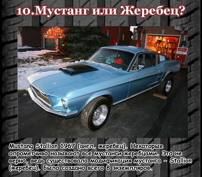 ������� ������ � muscle-cars